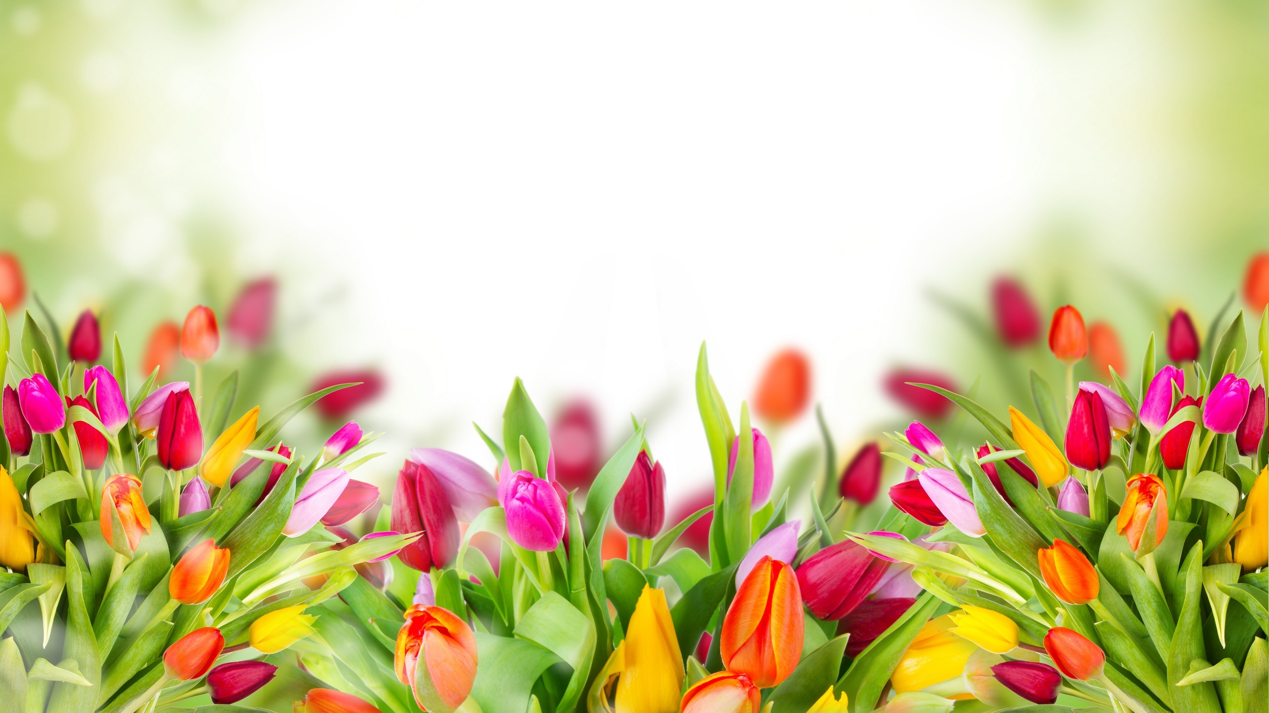 Открытка слайд цветы, днем рождения