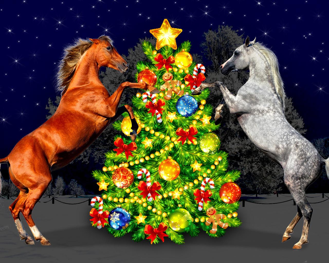 Год лошадей картинки