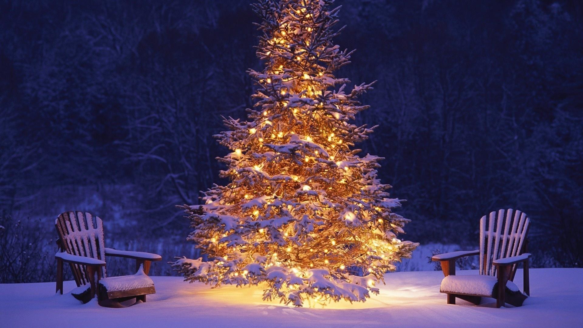 Картинки, картинки новогодней елки на рабочий стол