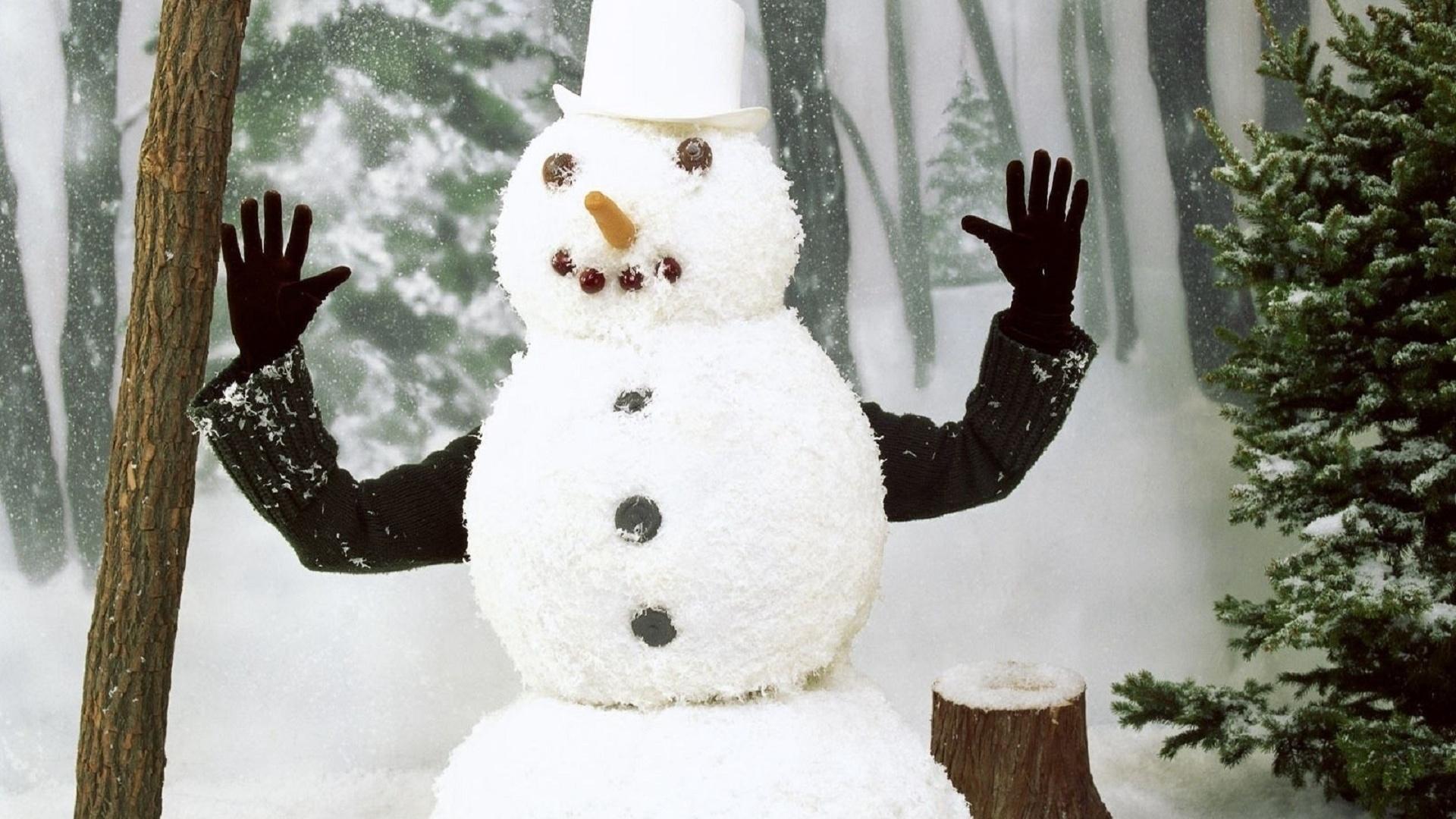 Картинки крутые снеговики, открытки