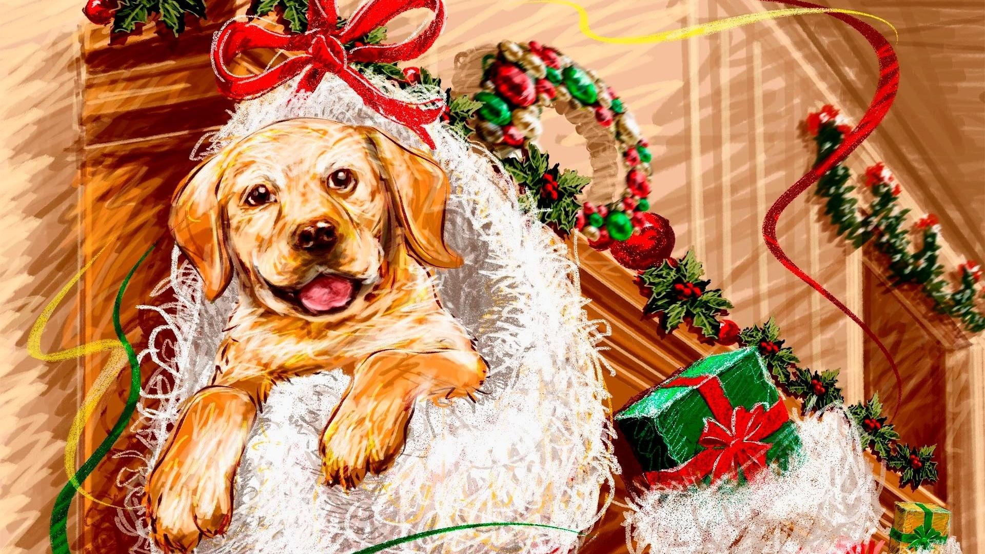 Смешные картинки на новый год собаки 2018, картинки приколов олег
