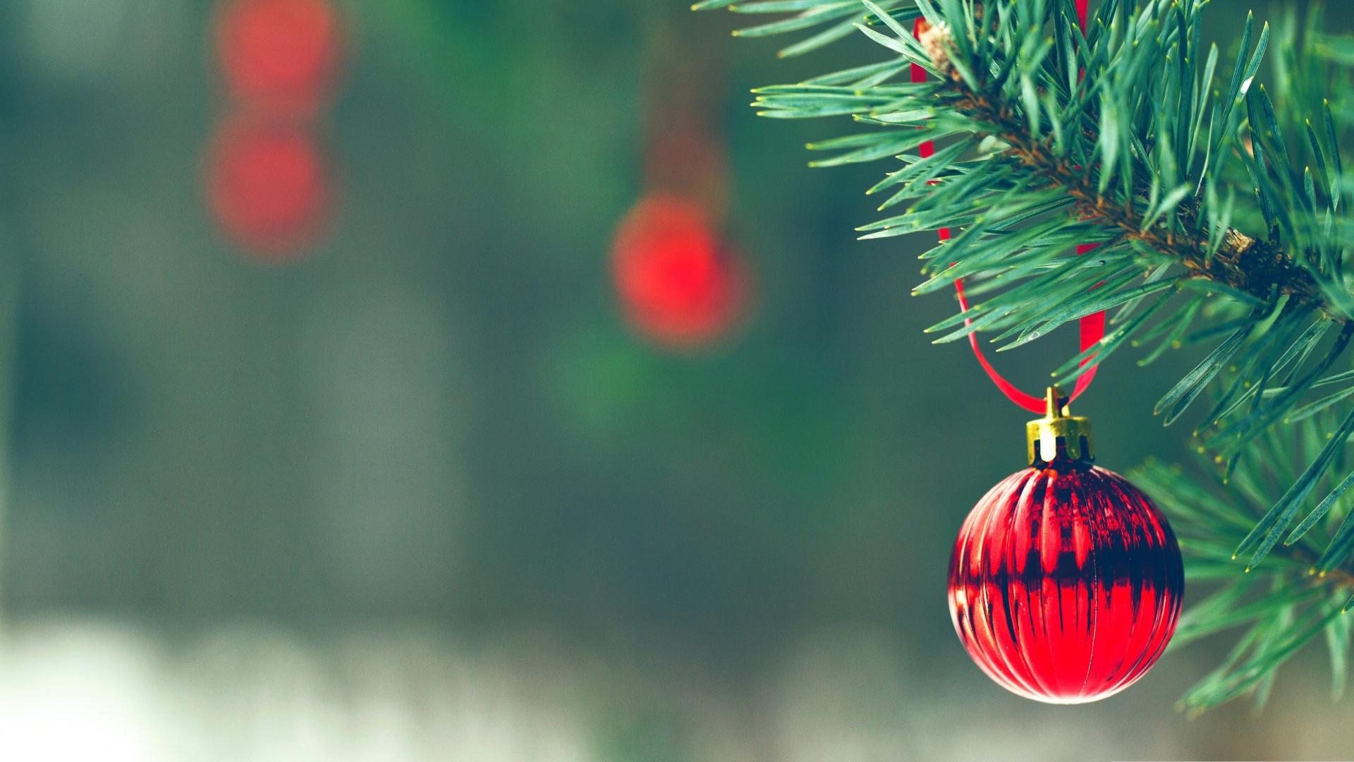 елка, игрушки, новый год