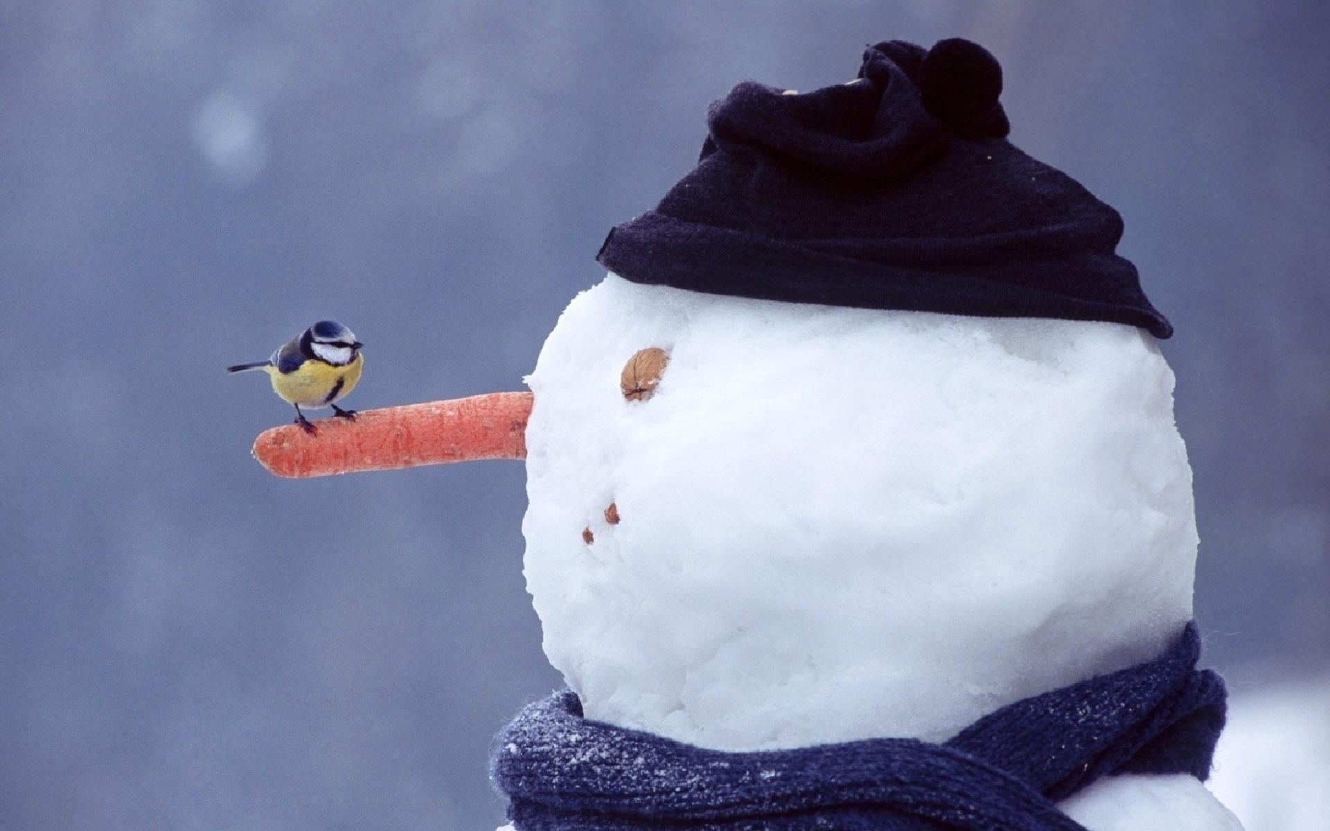 Доброе утро картинки прикольные снеговик