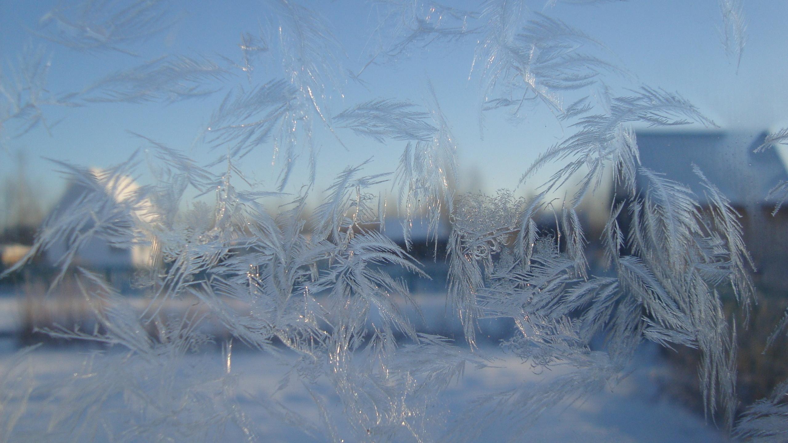 Картинки с морозом и зимой, картинки ленка днюхой