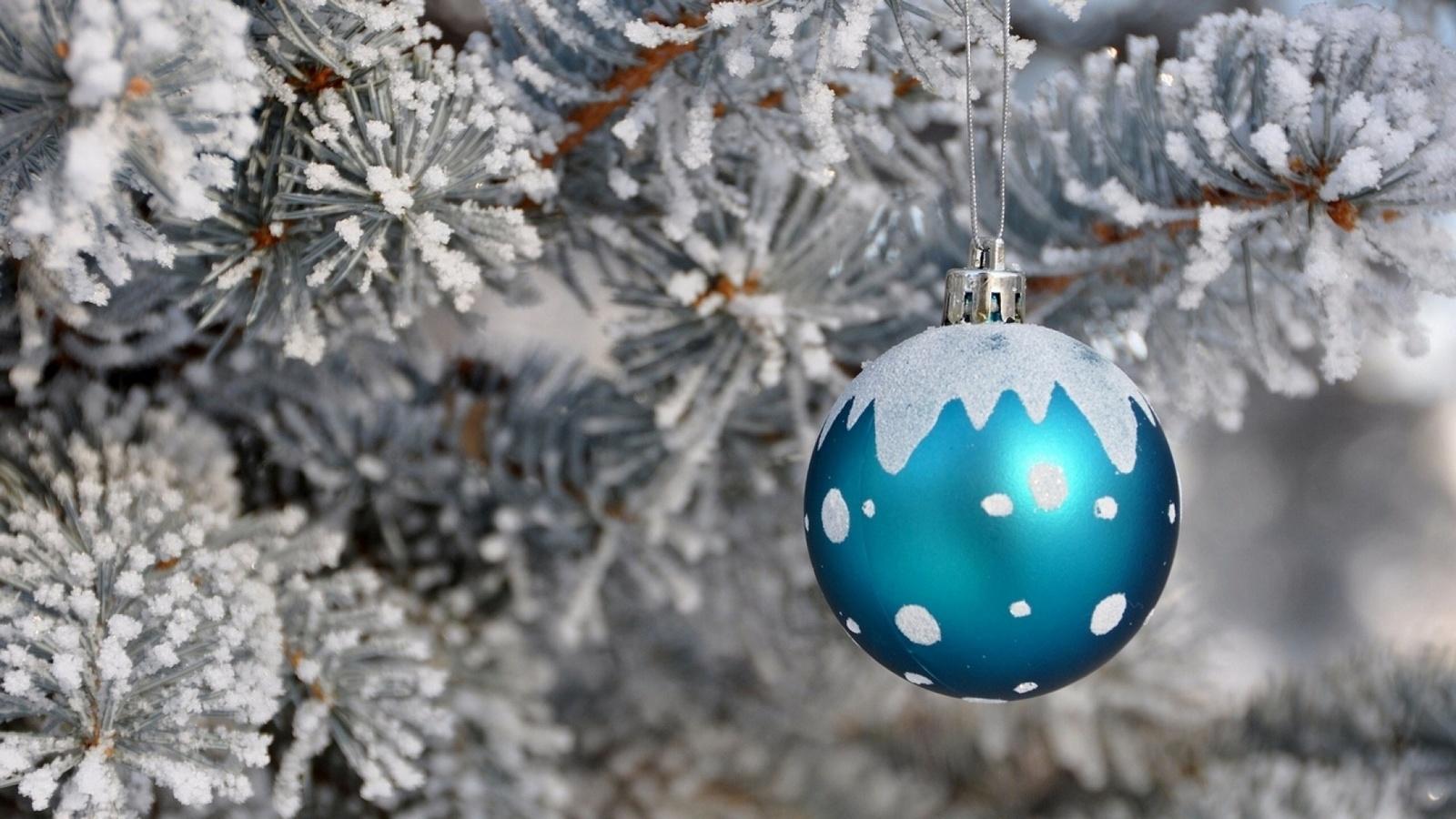 игрушка, шар, елка