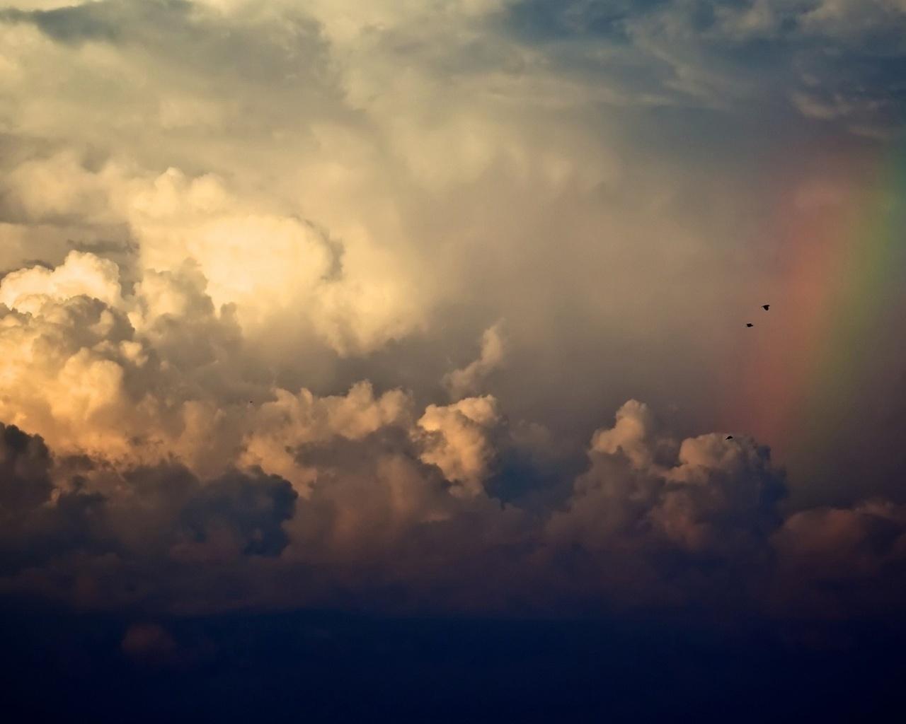 небо, радуга, облака, дождь, птицы