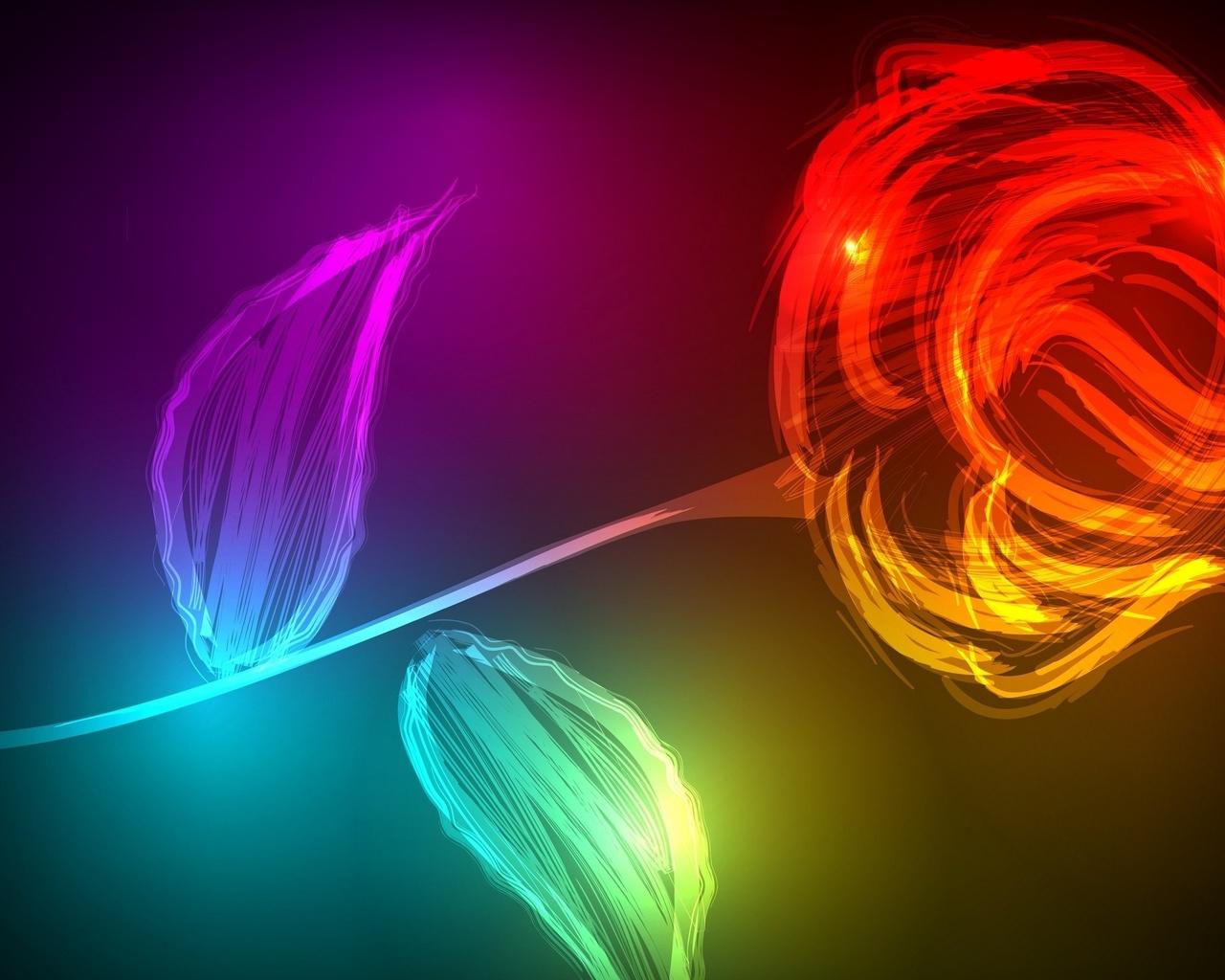 роза, цветок, фон, красный, жёлтый, цифра, красиво