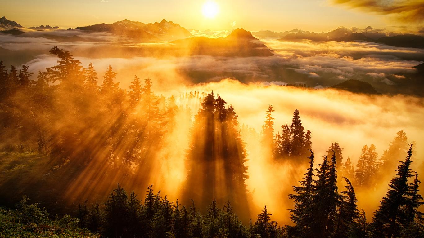 Солнце солнышко  Природа  живые картинки