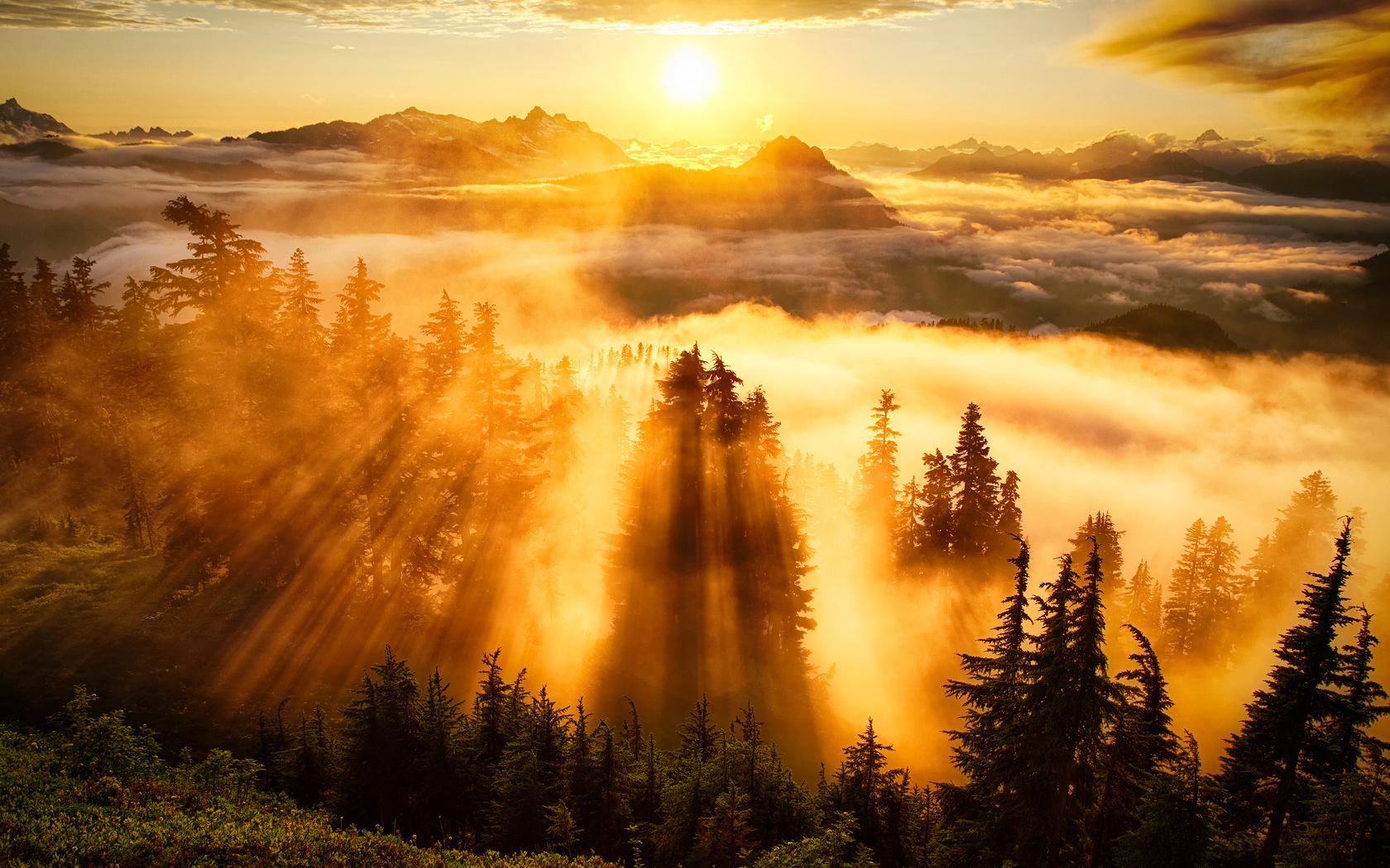 С добрым утром картинки с солнцем и природой