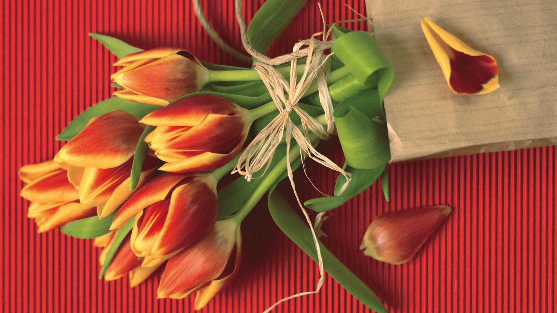 Смешные картинка с тюльпанами