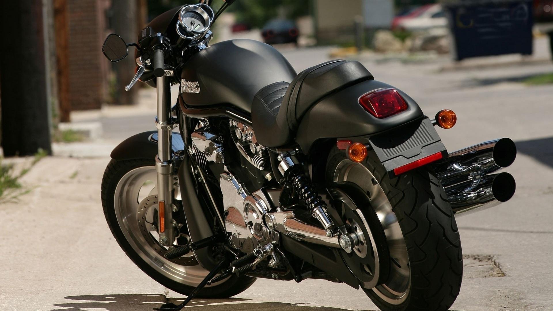харлей дэвидсон, мотоцикл, байк, черный, дорога, улица