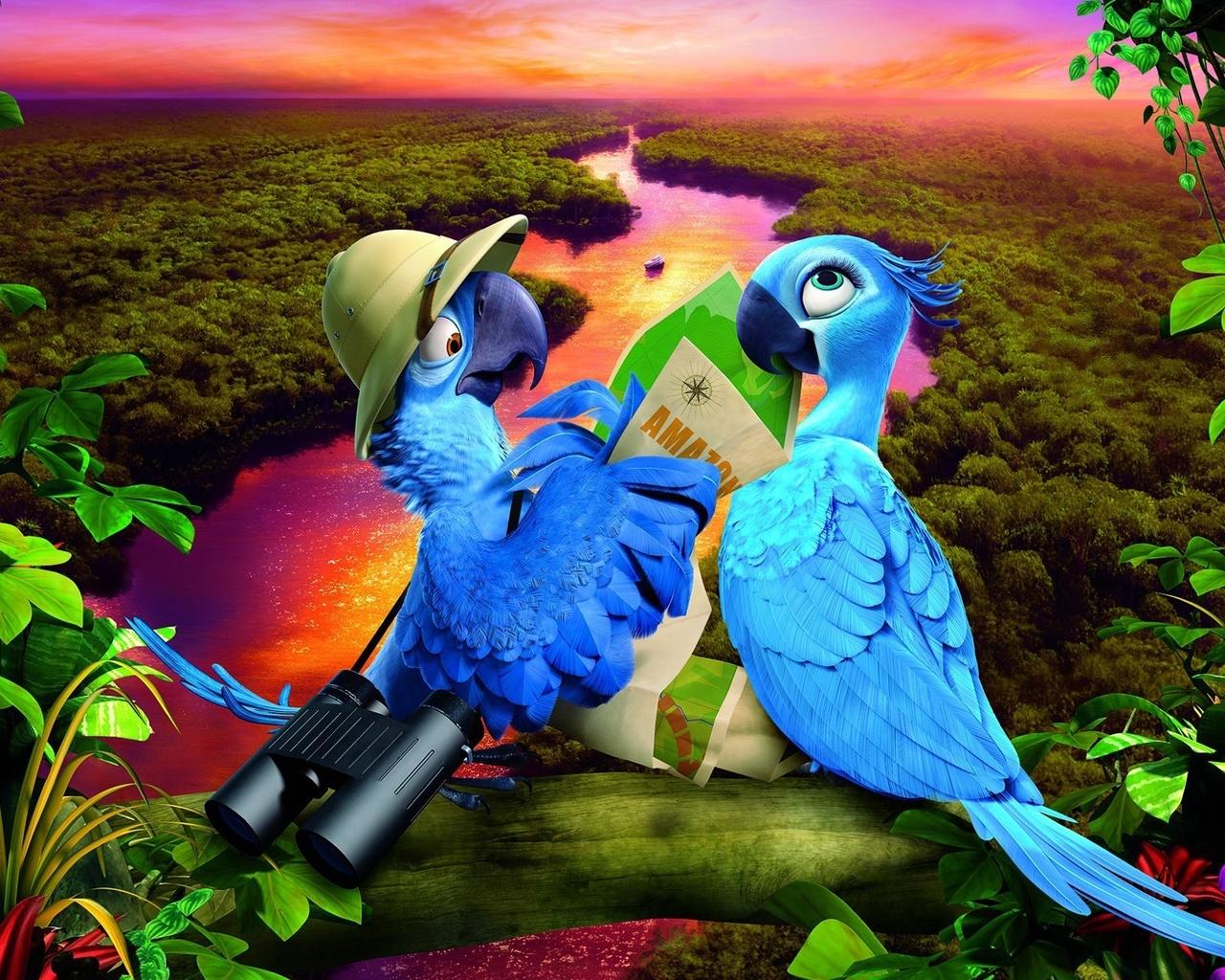 картинки попугая голубчика знания помогают