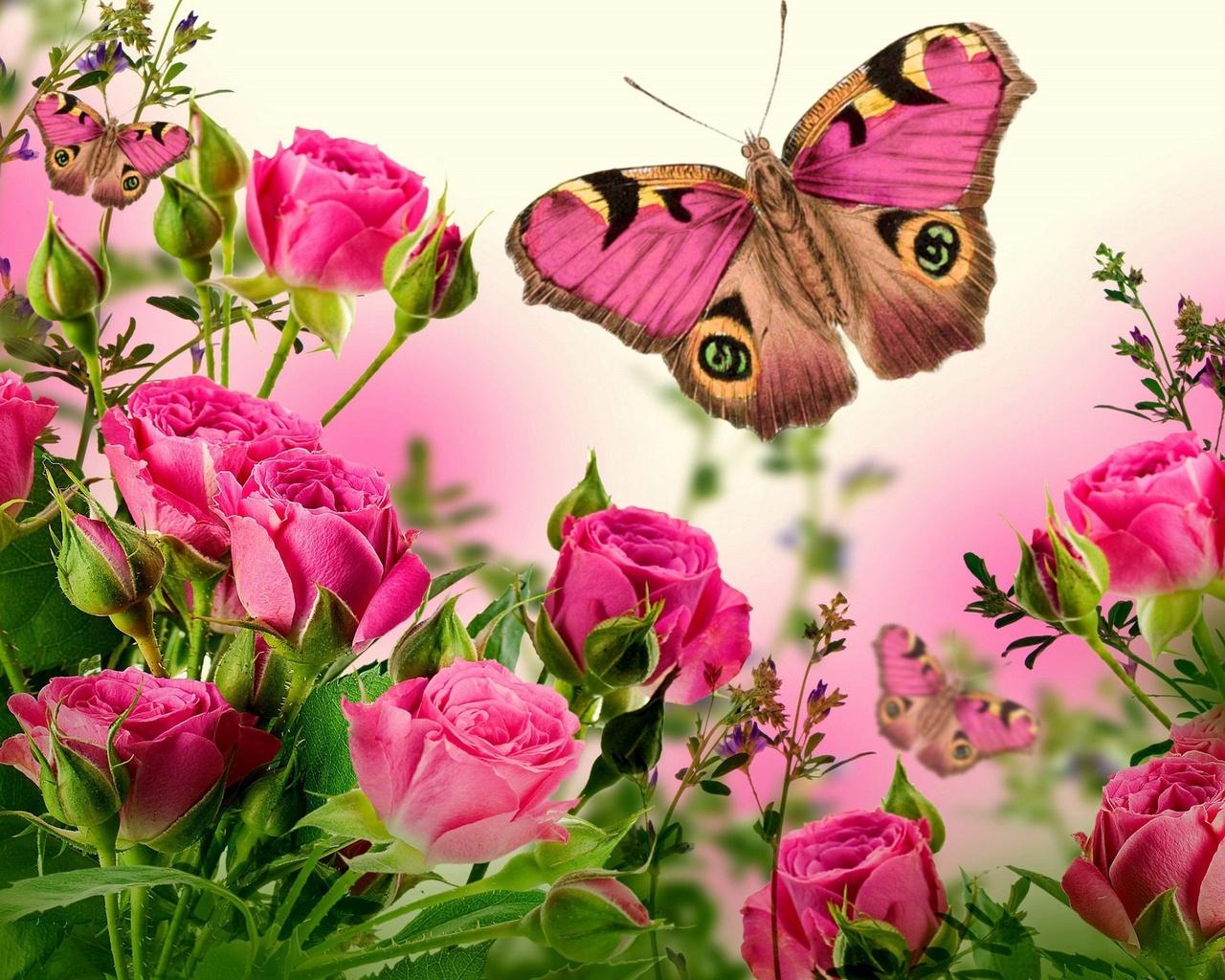 Про работу, картинки анимации цветы с бабочками