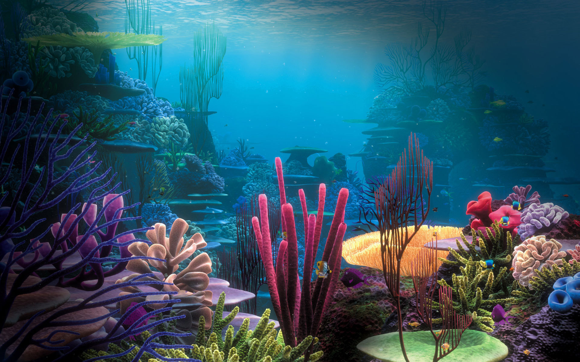 одной красивые фотографии морского дна голубые горошины
