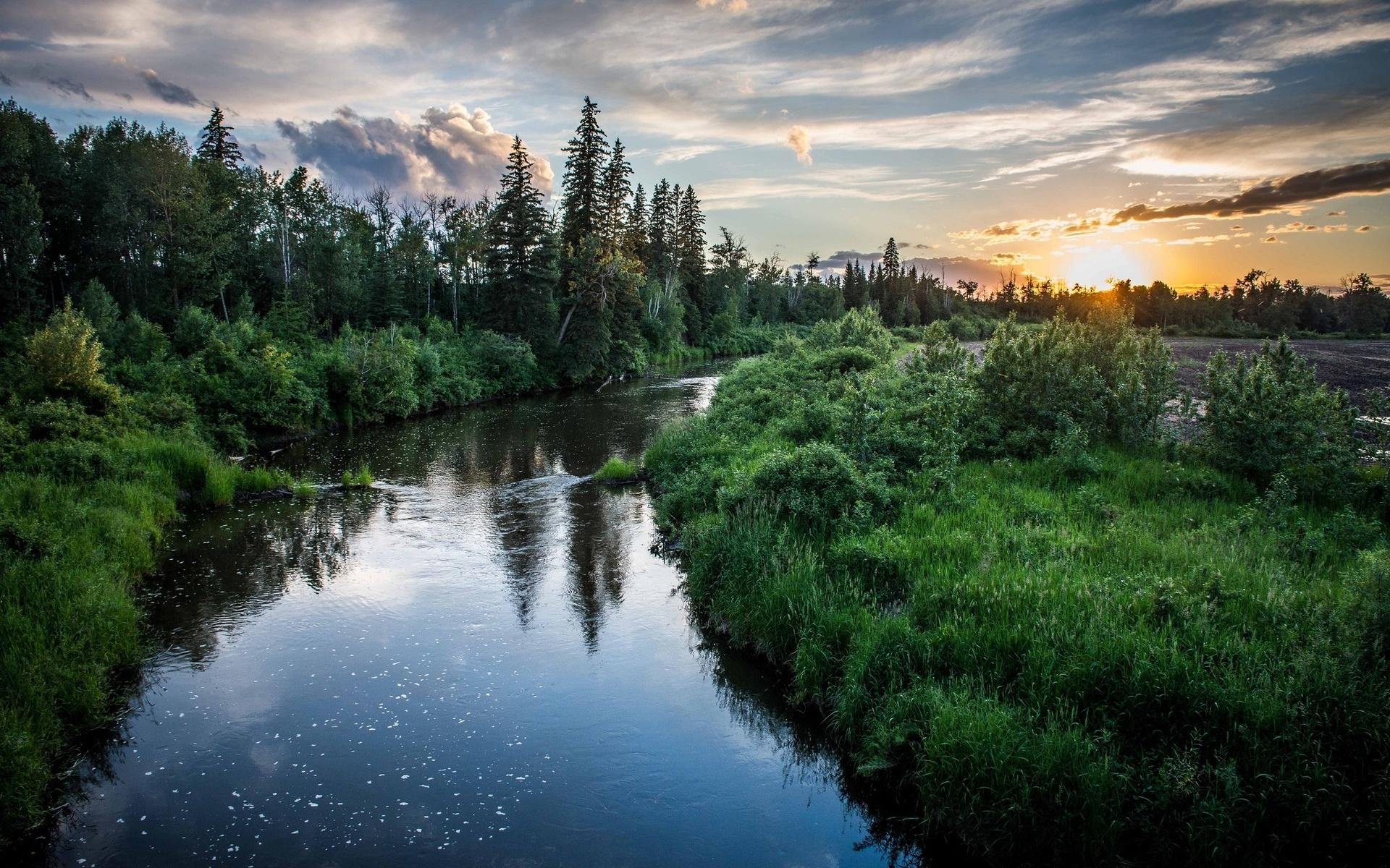 День рождения, картинка с рекой и лесом