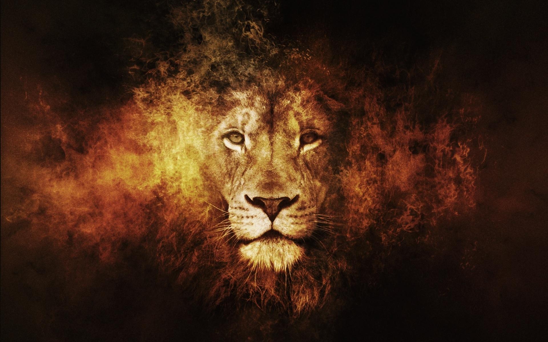 Картинка крутые лев, выходной картинка анимация
