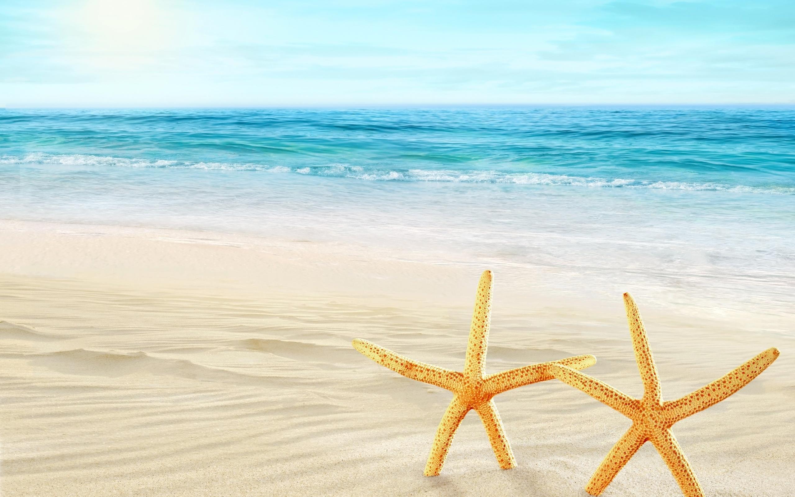 Морские пляжи открытки, снова здравствуйте картинки