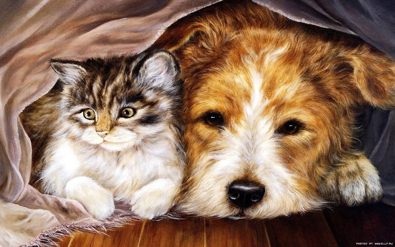 Учительнице английскому, рисованные открытки животных