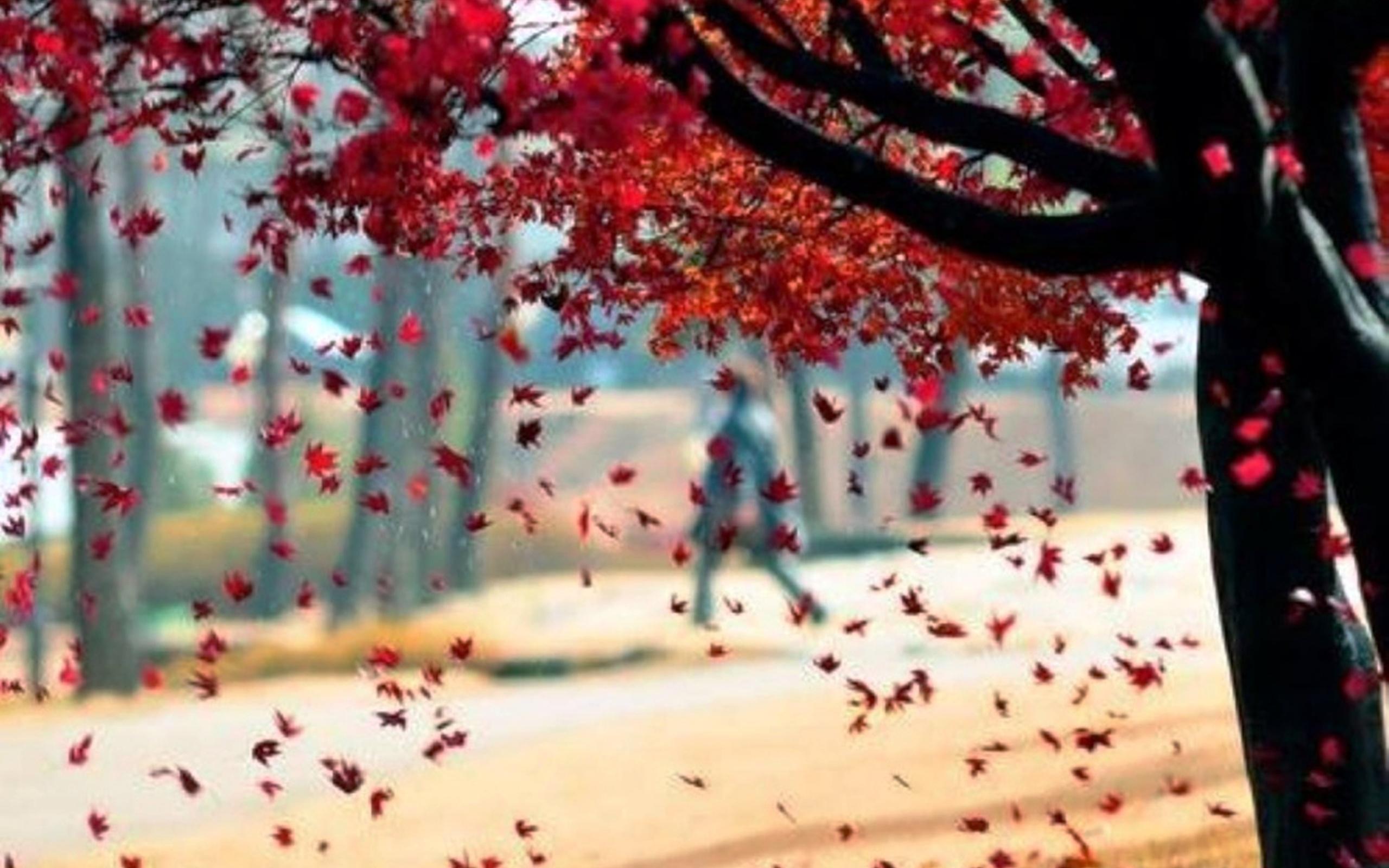словам деревья с опавшей листвой картинки остросюжетная киноэпопея вдохновила
