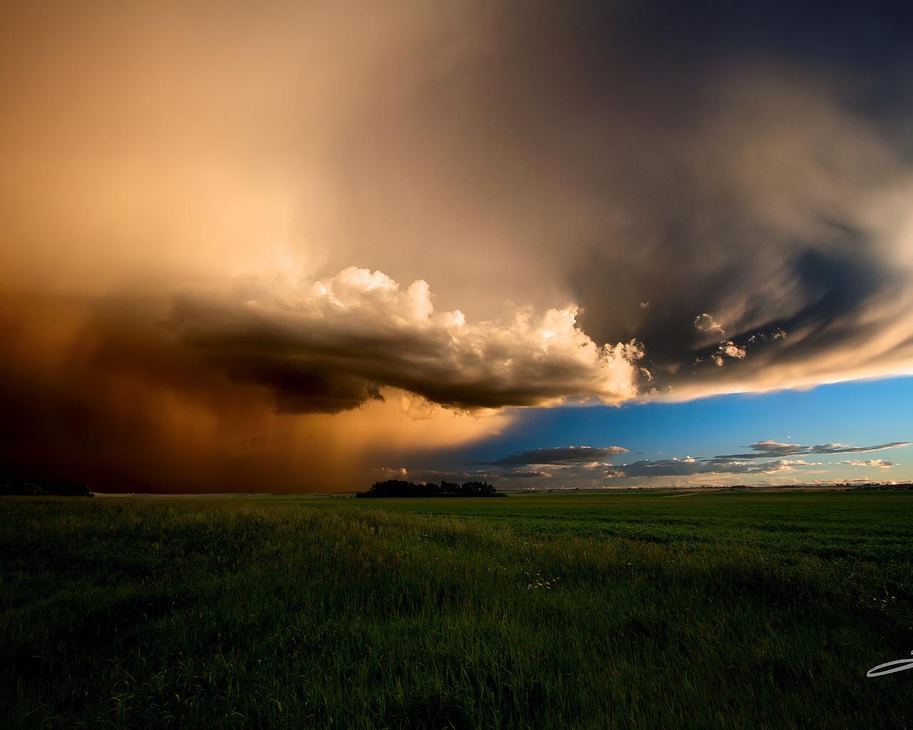 канада, альберта, вечерний шторм, поле, небо, тучи, лето, июнь