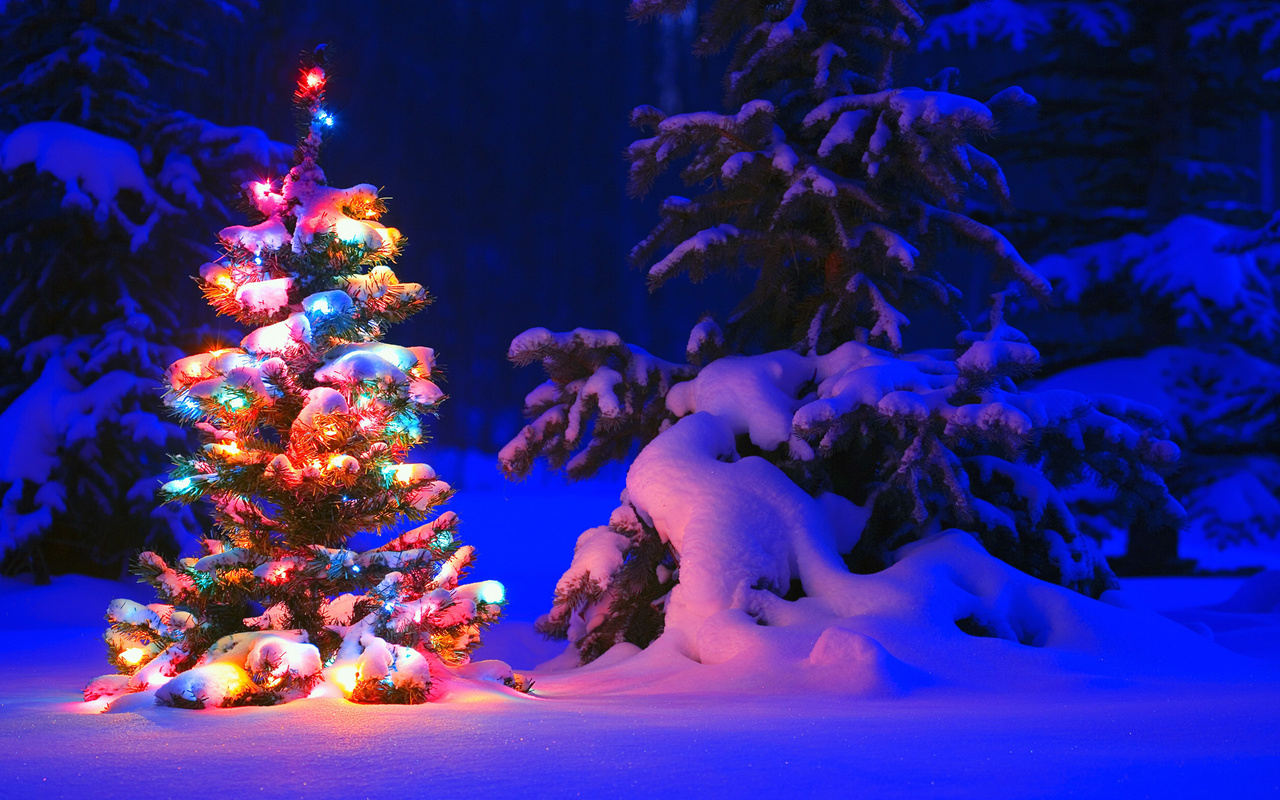 Французские, картинки наряженная елка и снег