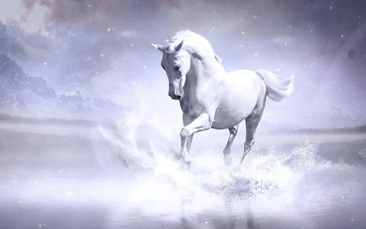 horse, white, clouds, wild