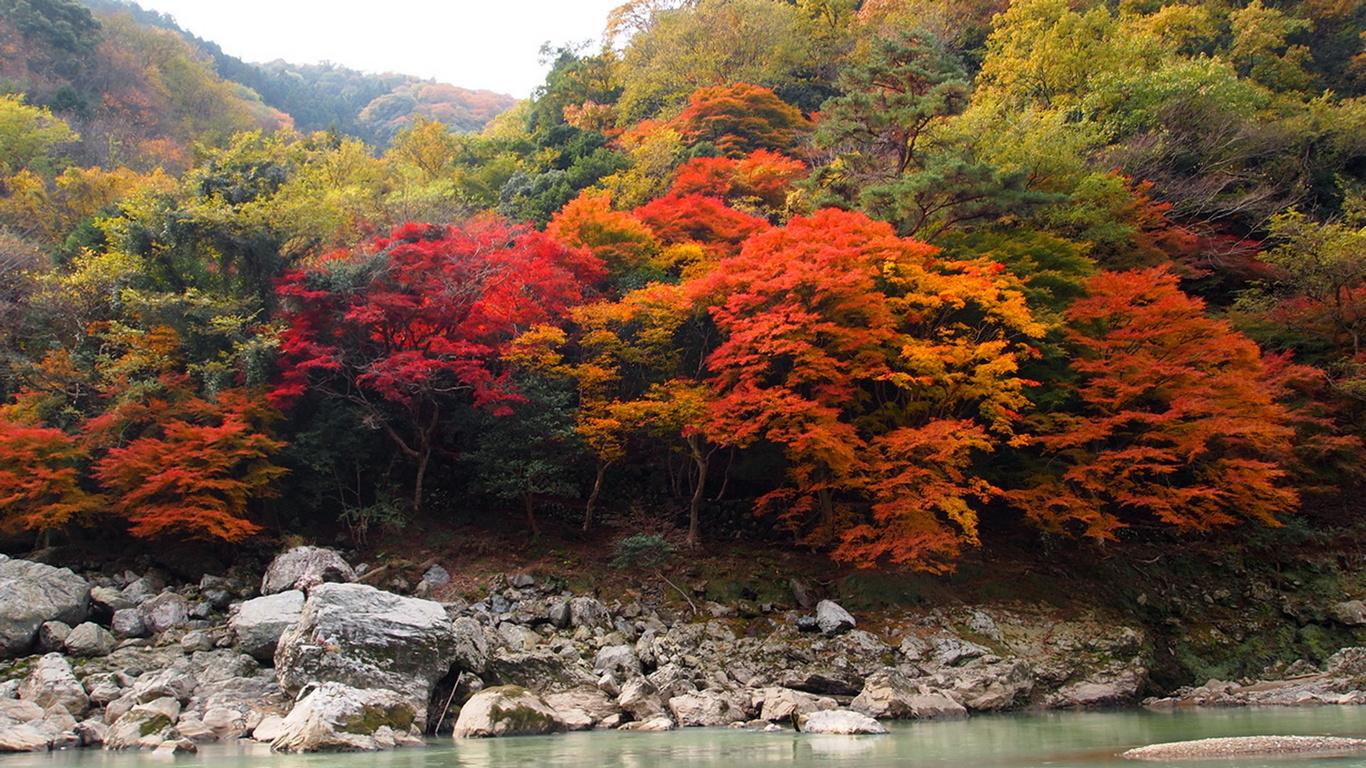 осень, деревья, лес, река, камни, красота, небо, природа
