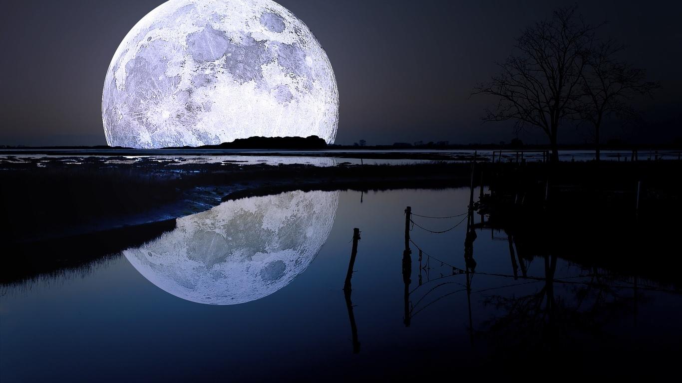 moon, river, reflexion, tree, night, star, sky