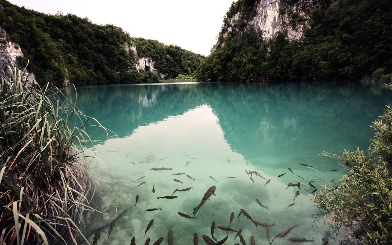 природа, горы, озеро, люди, туристы, красиво