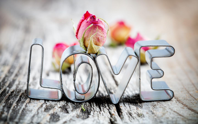 love, формы, любовь, розы, макро, фото, тема, формочки, лавка