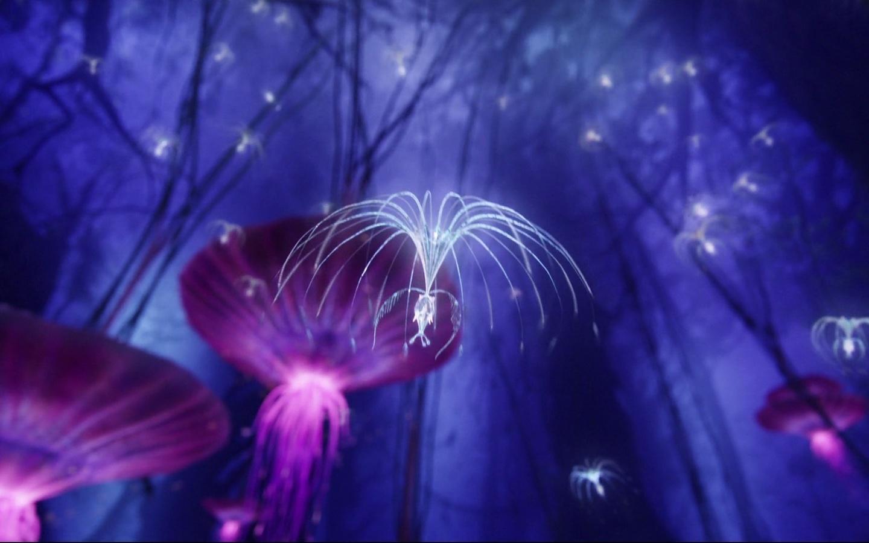 atokirina, tree, forest, purple