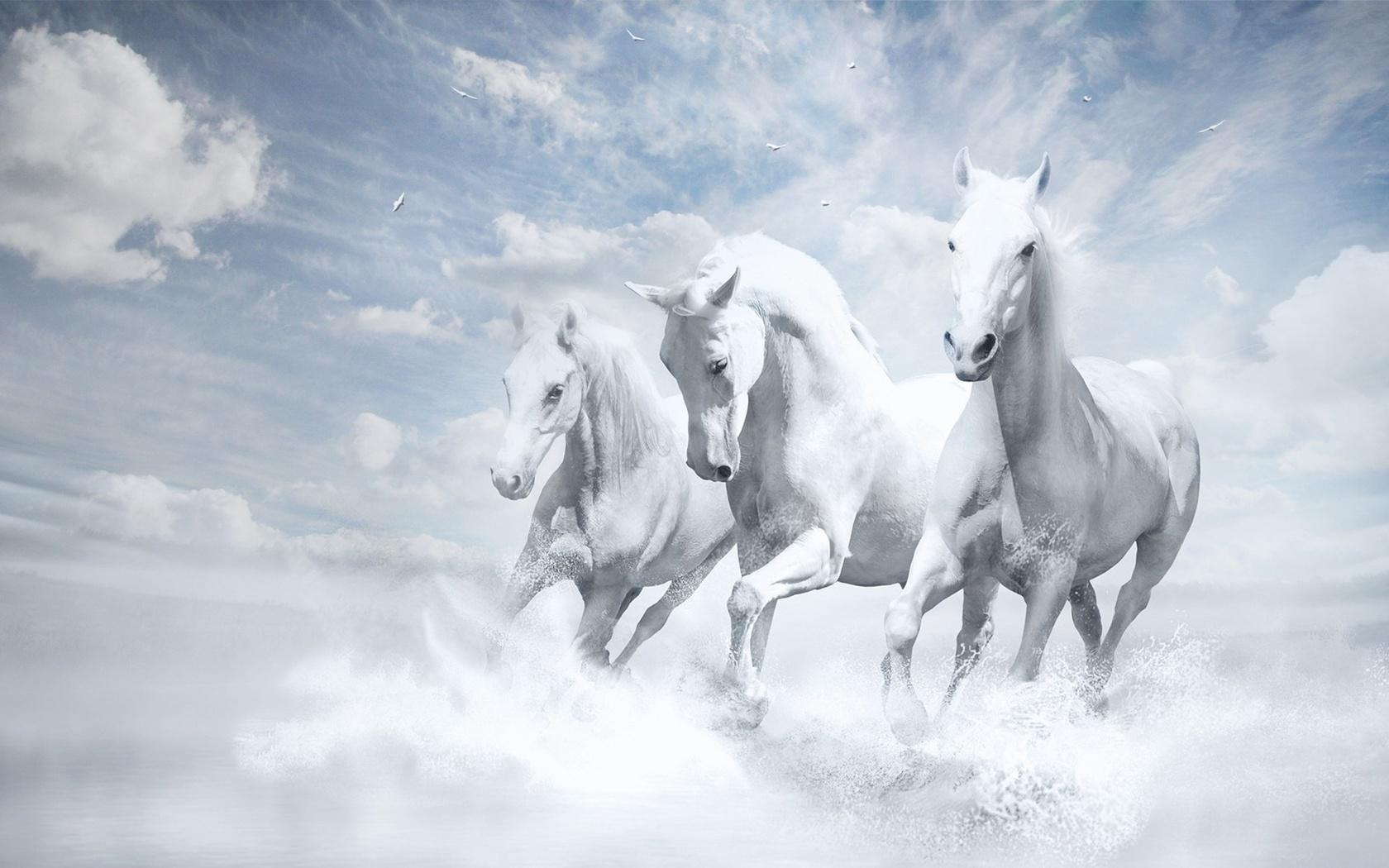 фэнтези, арт, картина, лошади, трио, белый фон, облака
