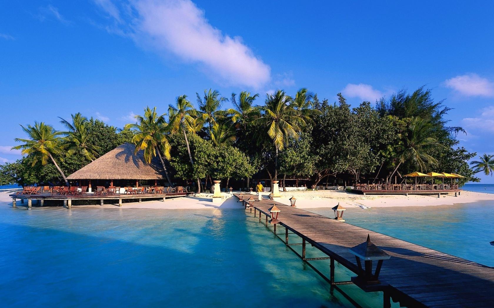 maldives, island, exotic, ocean, water, palm