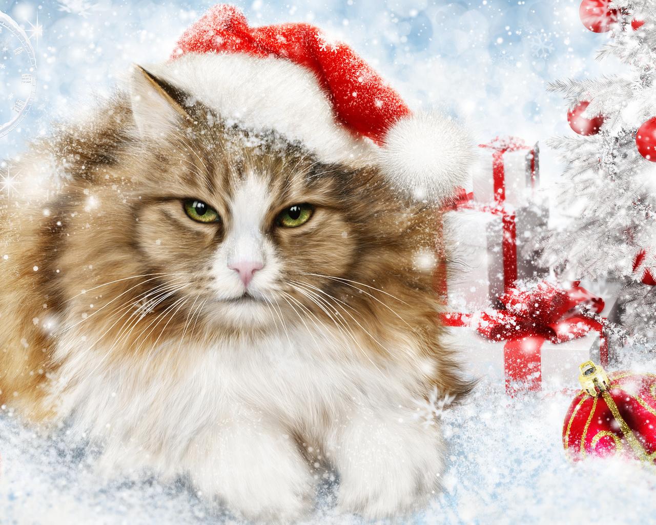 Новогодняя картинка с котами, картинки доброе утро