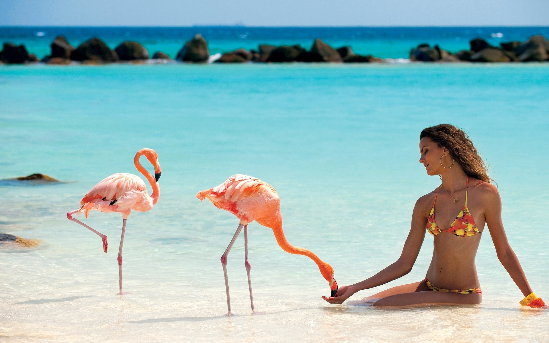 фламинго картинки и человек минкульте