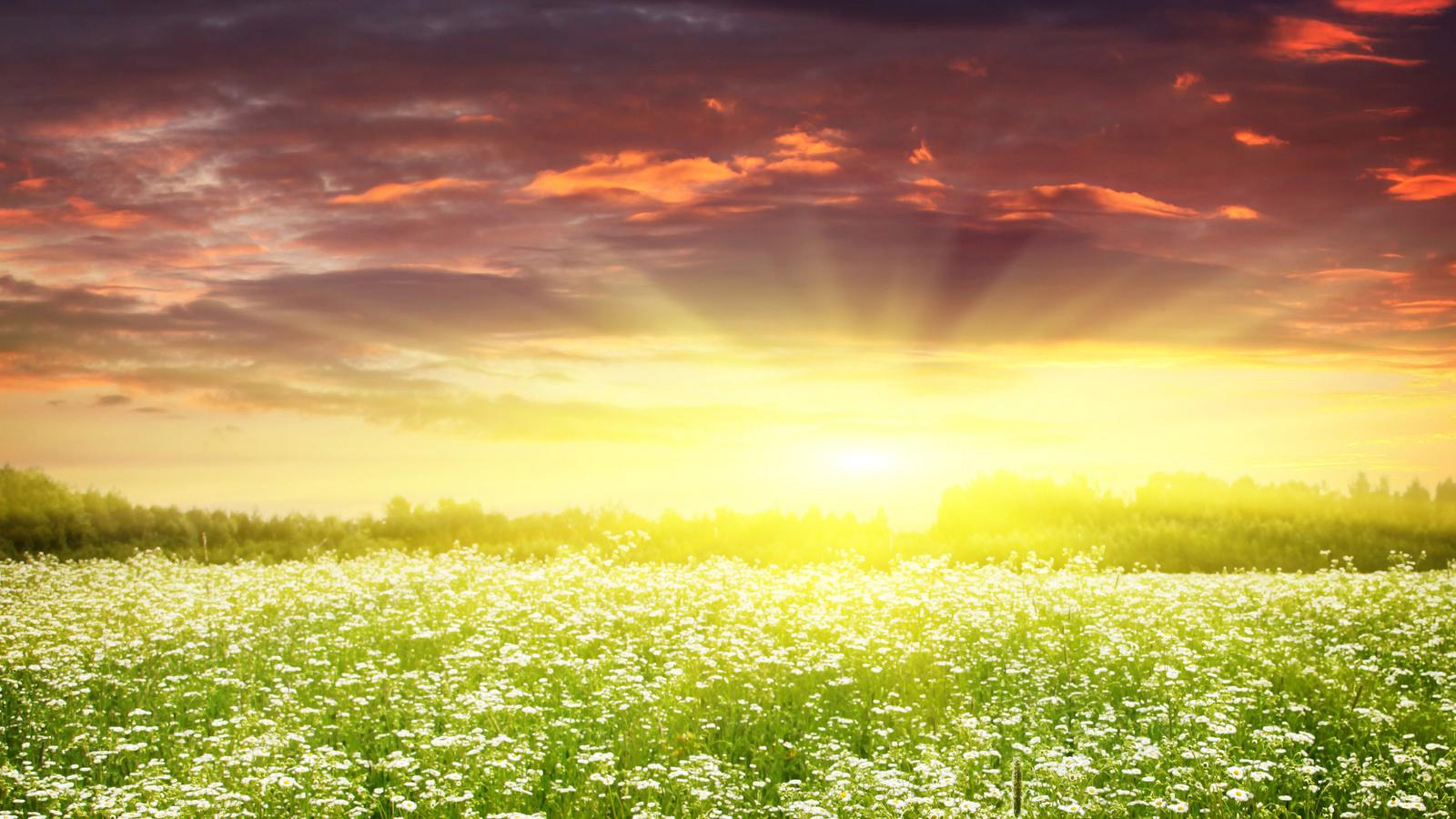 Картинка с небом и солнцем, красивые фото