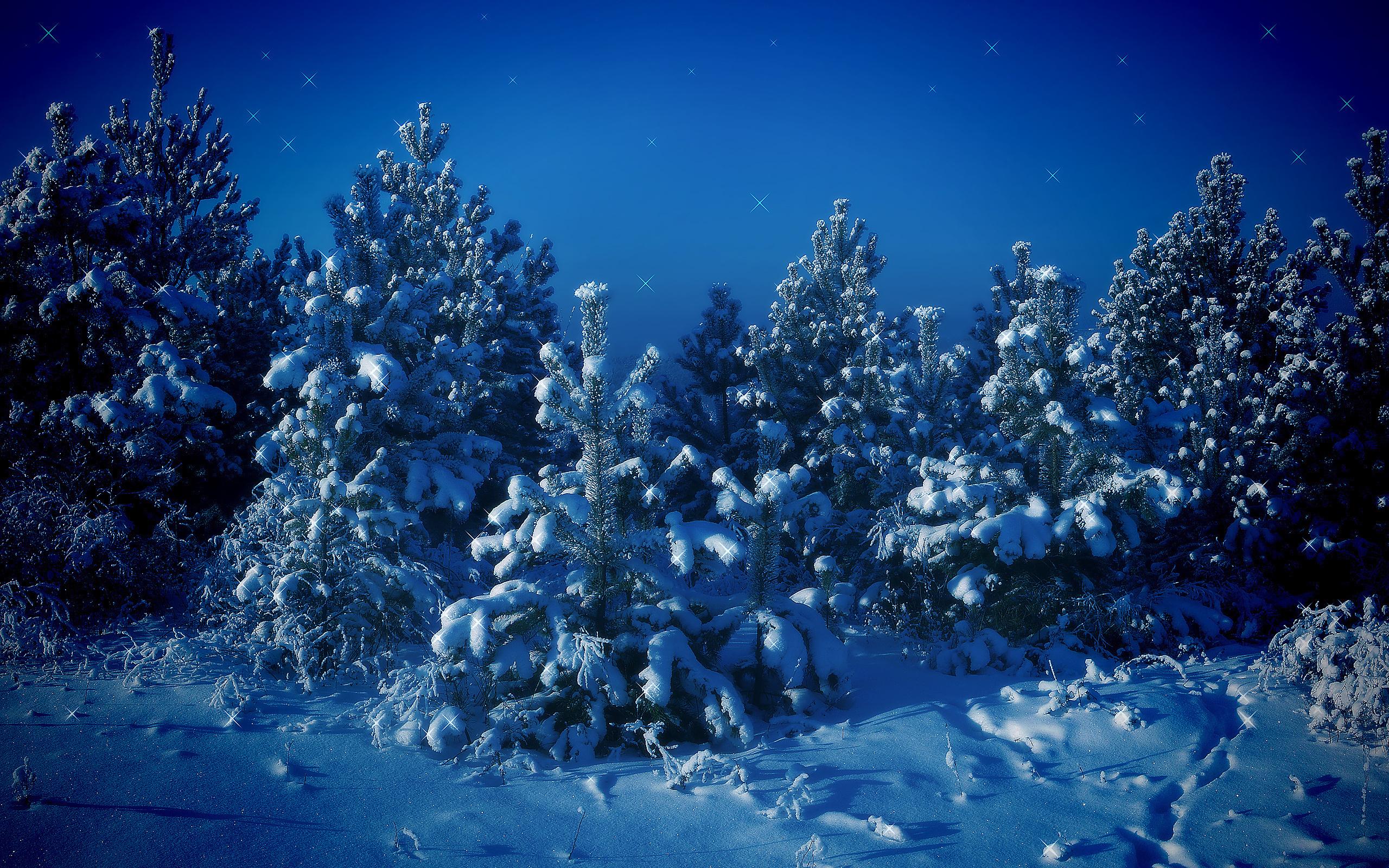 Падает снег картинки на рабочий стол, поздравлением днем