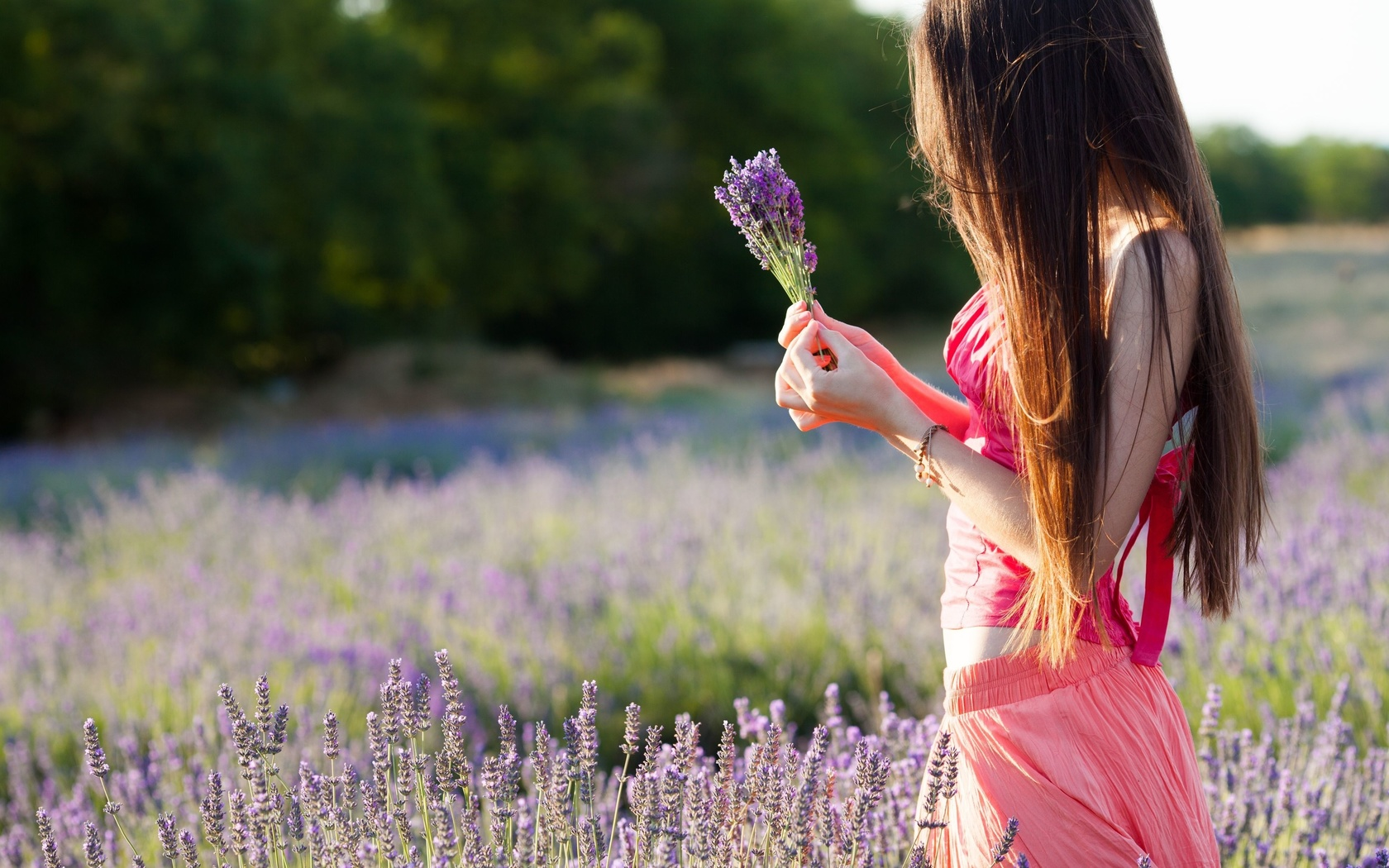 настроения, девушка, брюнетка, поле, цветы, фиолетовый, руки, природа, деревья