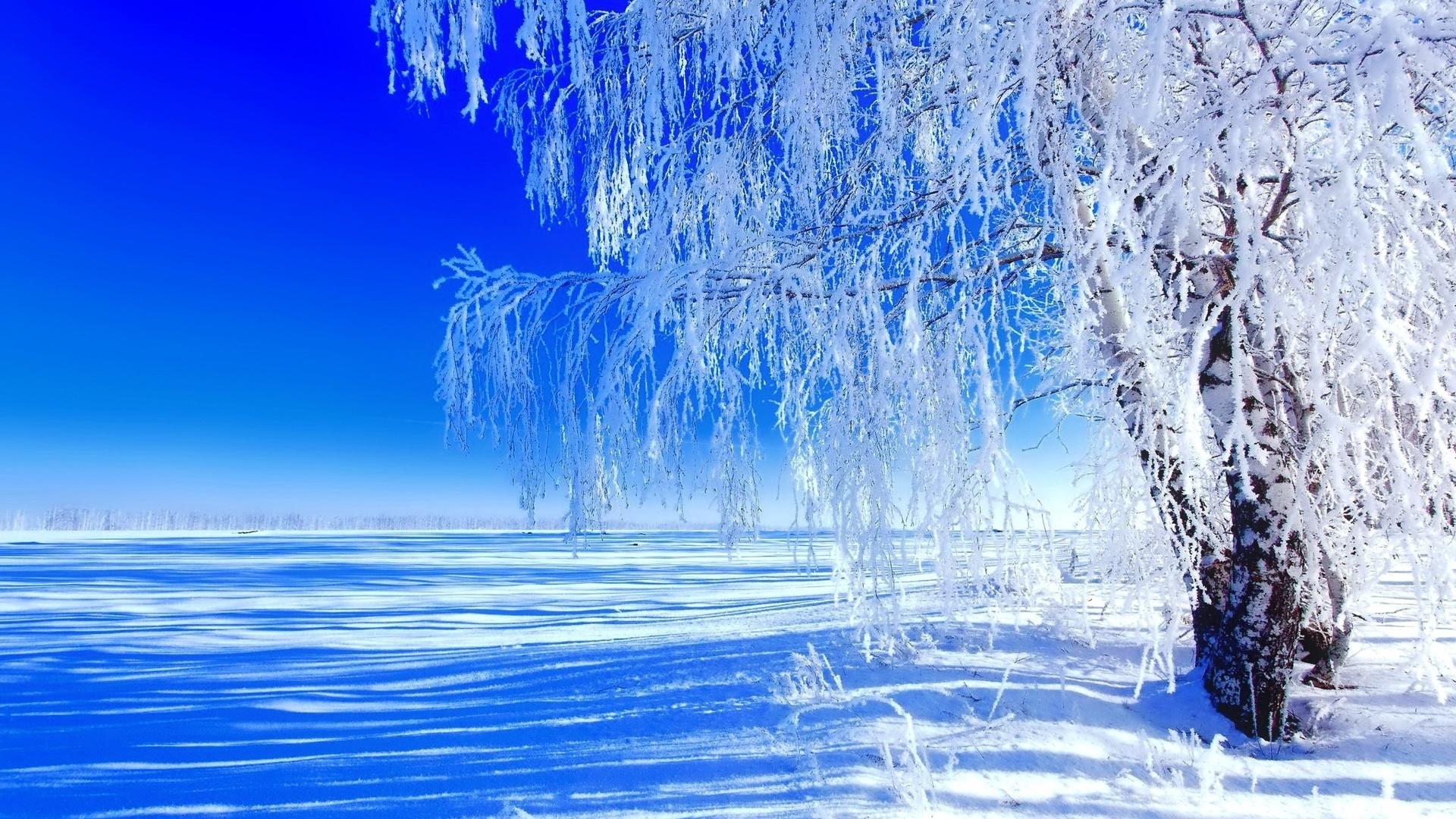 Открытки доброе утро зимний пейзаж, своими
