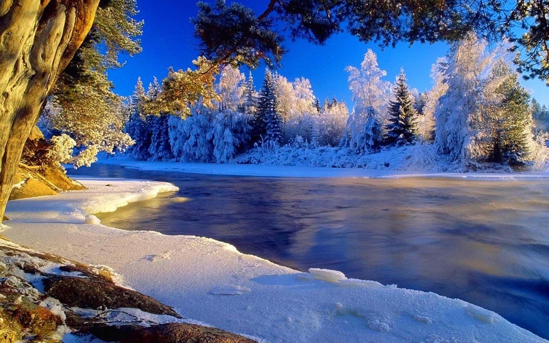 зимние картинки высокое качество