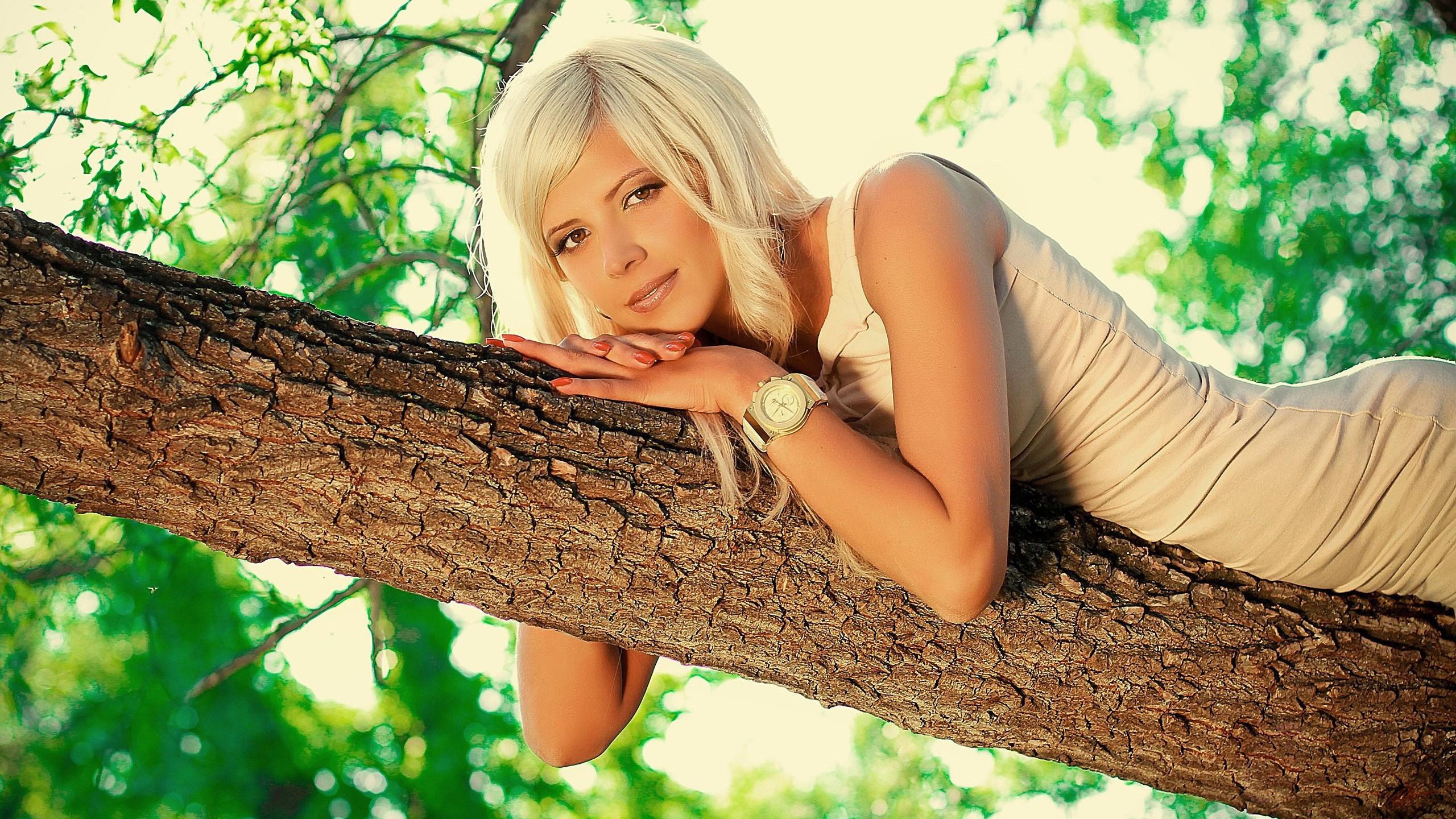этот девушки около дерева синшане запрашивали это