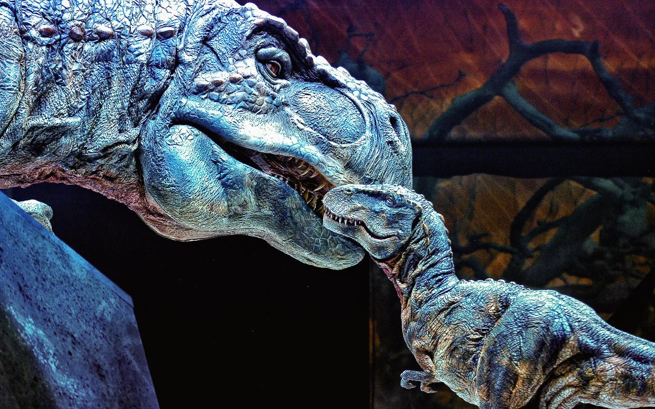 Динозавры картинки красивые, майле