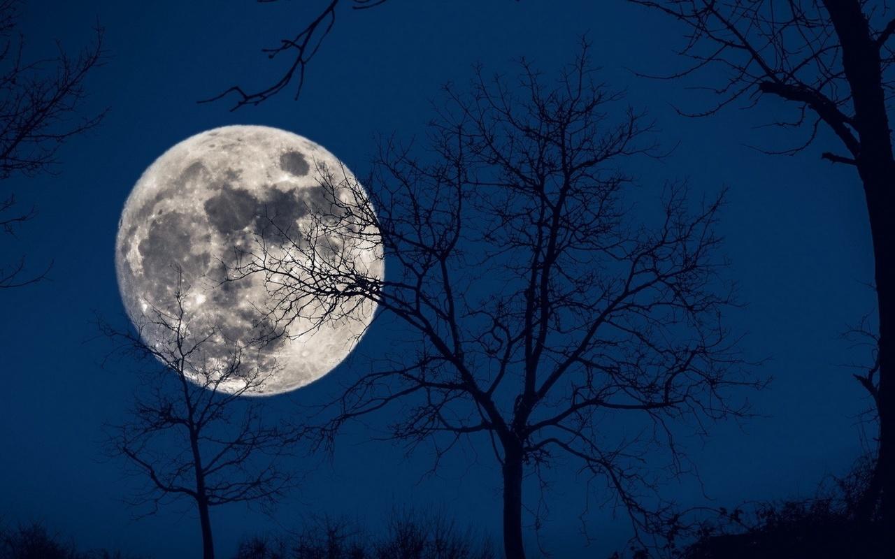 Классные картинки луны, национальные блюда