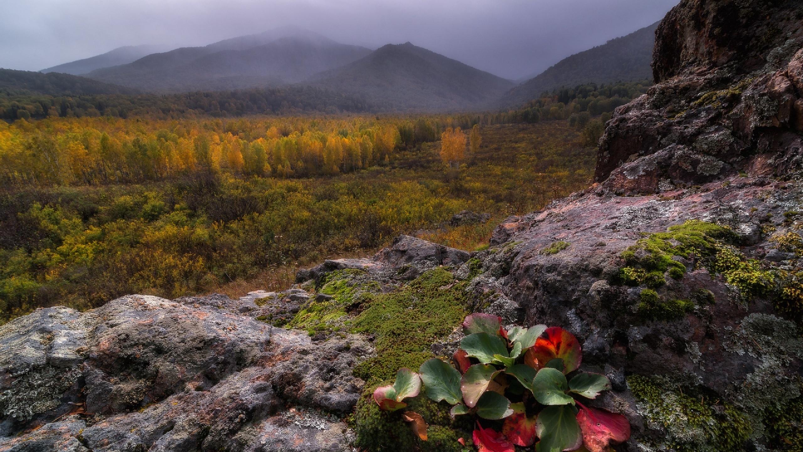 цветные алтайский заповедник фото осень первого