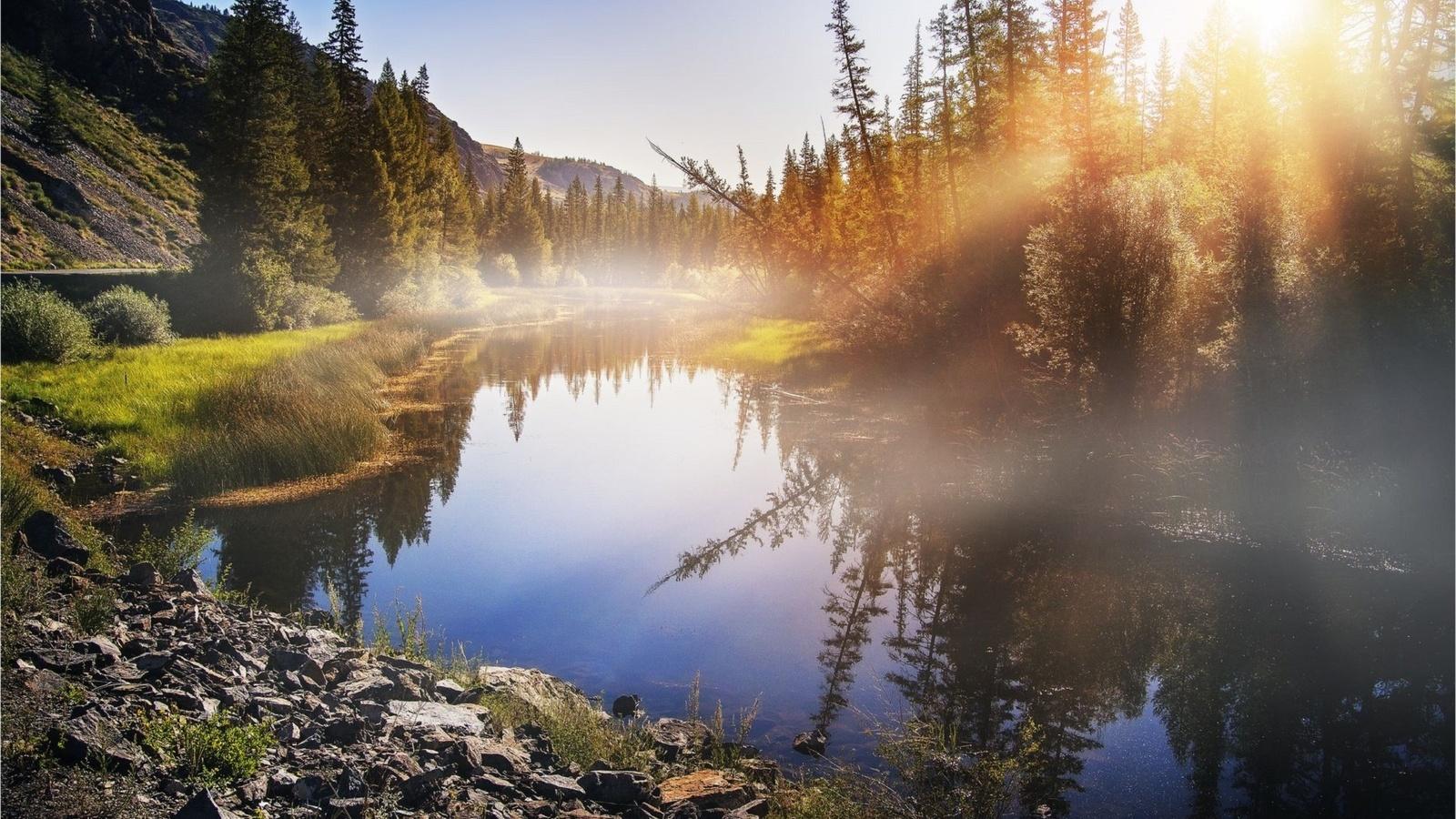 солнечный свет, лучи, речка, тайга, отражение, алтай, by художников павел