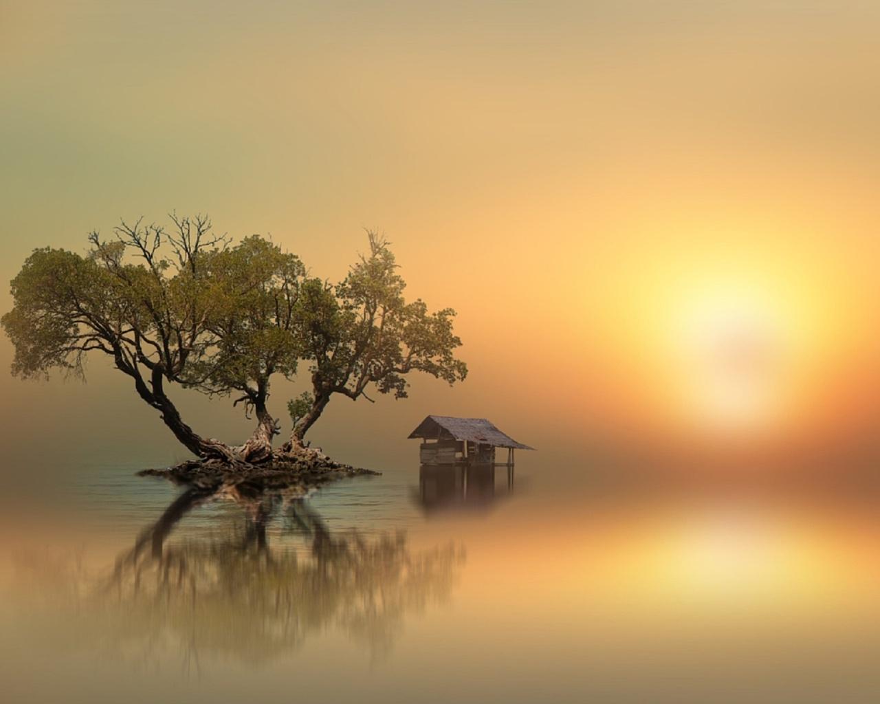 остров, три дерева, сарай, вода, солнце, туман, after, by id's