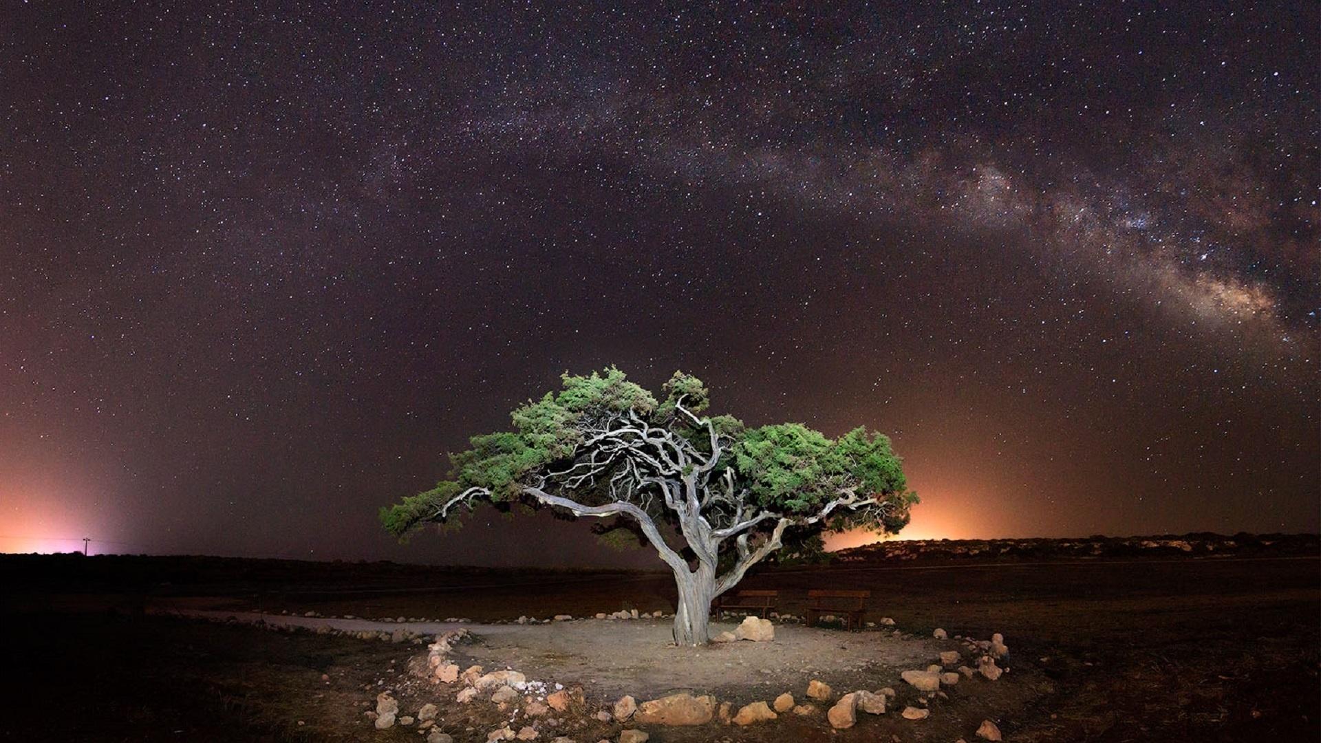 умеющие фото кипр звездное небо поленитесь включить