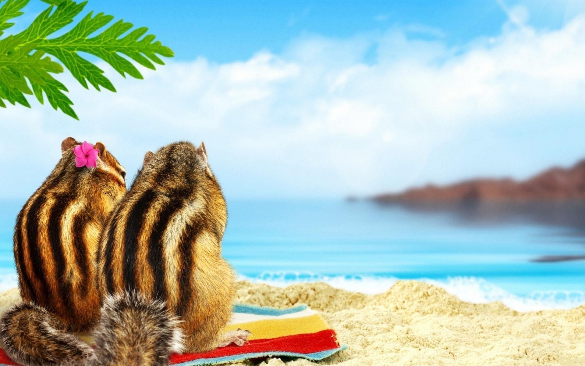Прикольные картинки с пляжами
