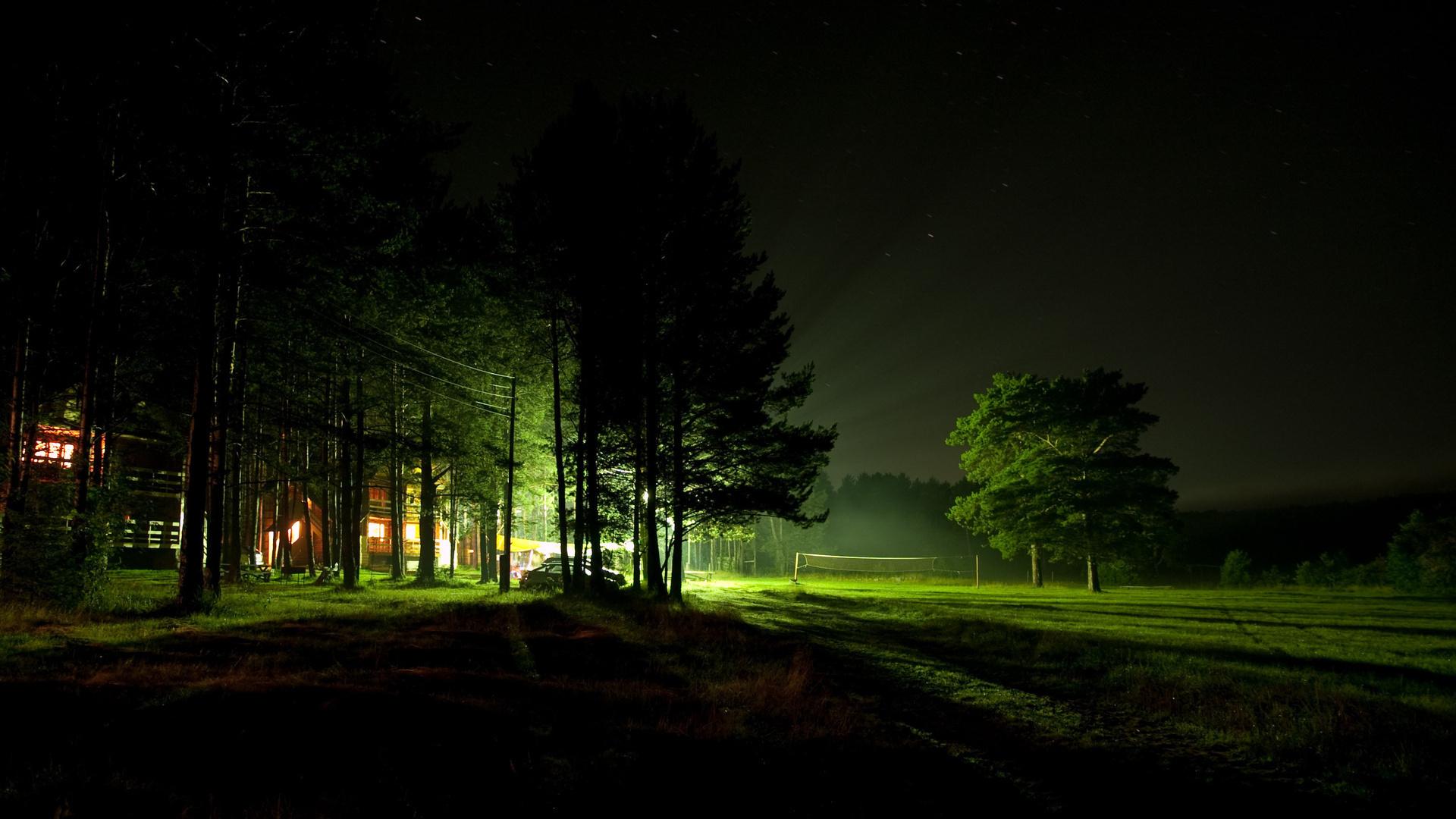 Картинки летняя ночь в лесу, поздравлением