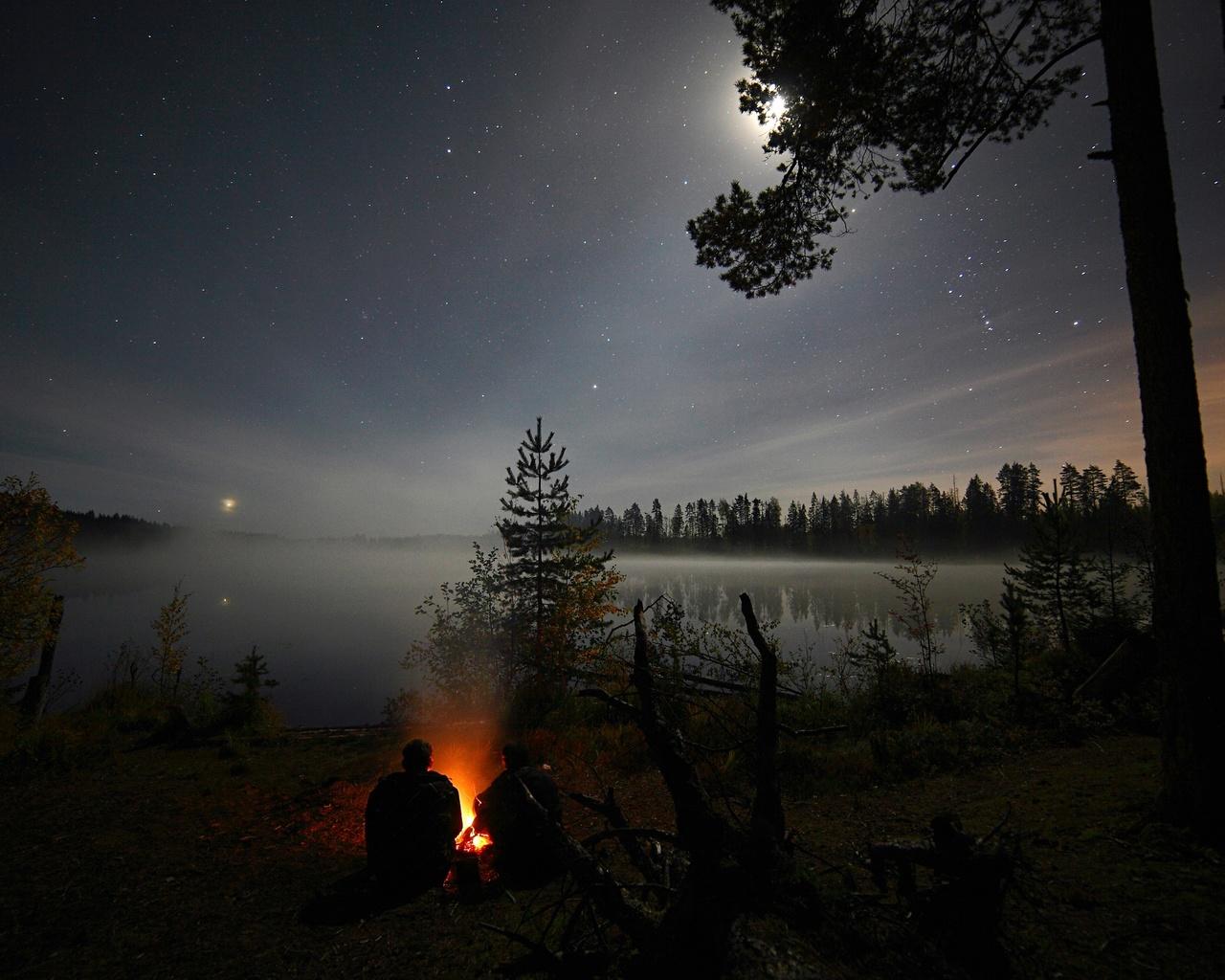 Картинки летняя ночь в лесу, маленькой